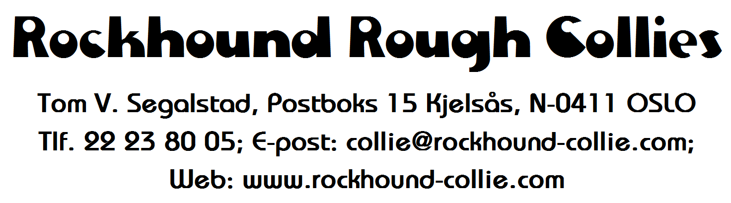 Rockhound Rough Collies