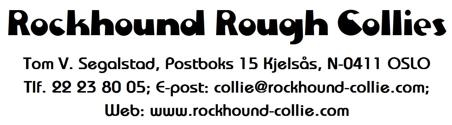 Rockhound Rough Collies